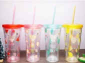 Food Grade 16oz PS Double Wall Tumbler With Straw
